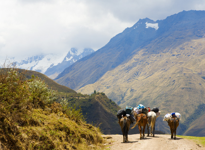 bigstock-On-The-Road-In-Andes-4291329