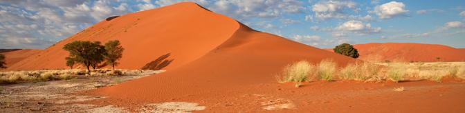 red-dune-landscape