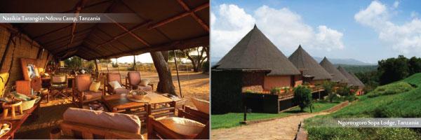 Mid Range Camps in Tanzania