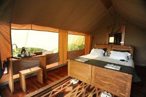Galapagos Safari Camp Tent