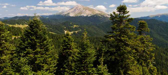 Ilgaz Mountains