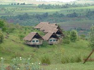 Rhotia Valley Tented Camp