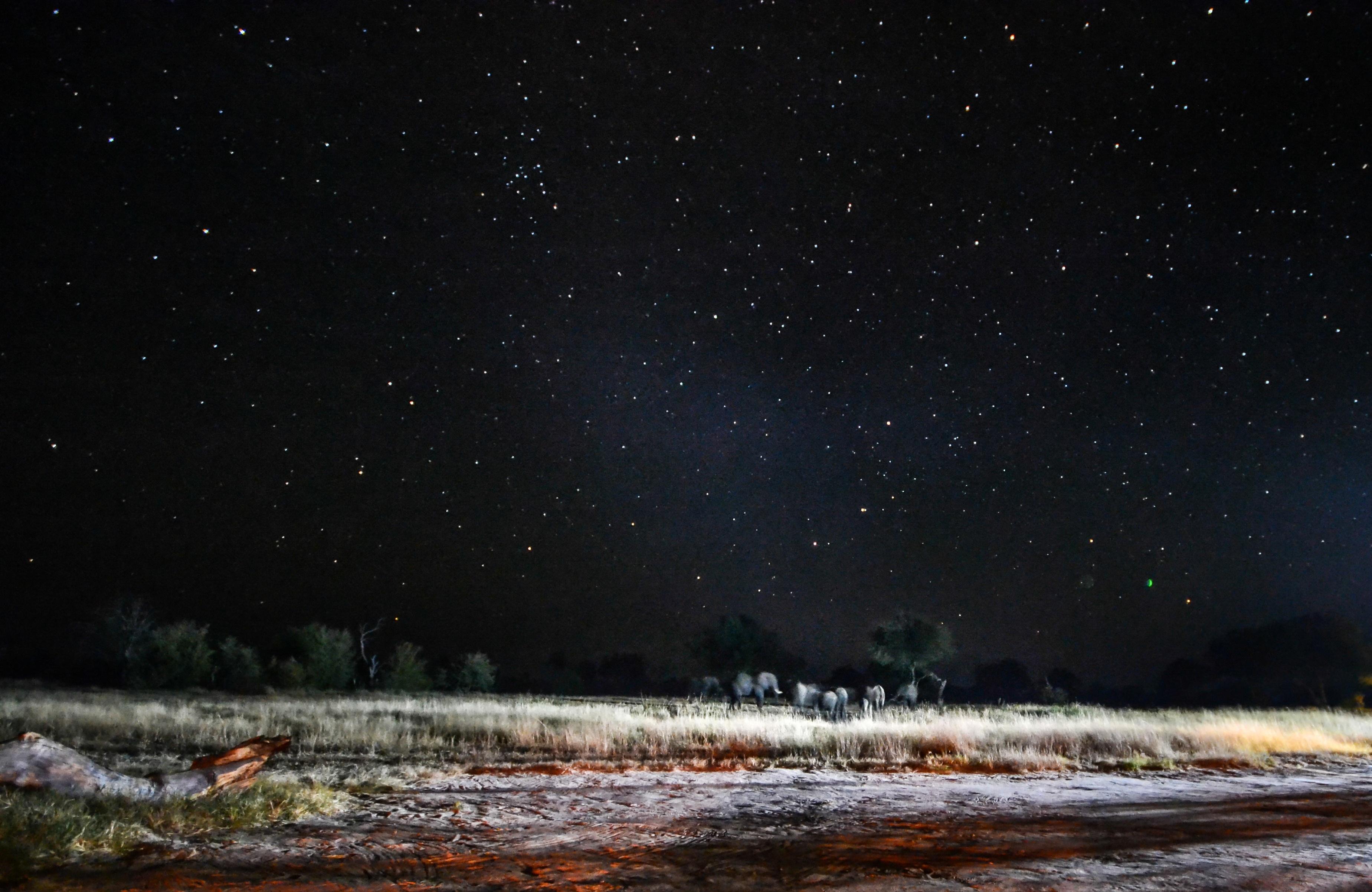 20_-_The_Jozibanini_Night_Sky.jpg