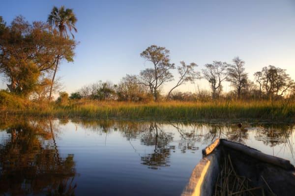 Okavanga Delta