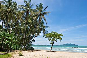 Tamarindo Beach Landscape