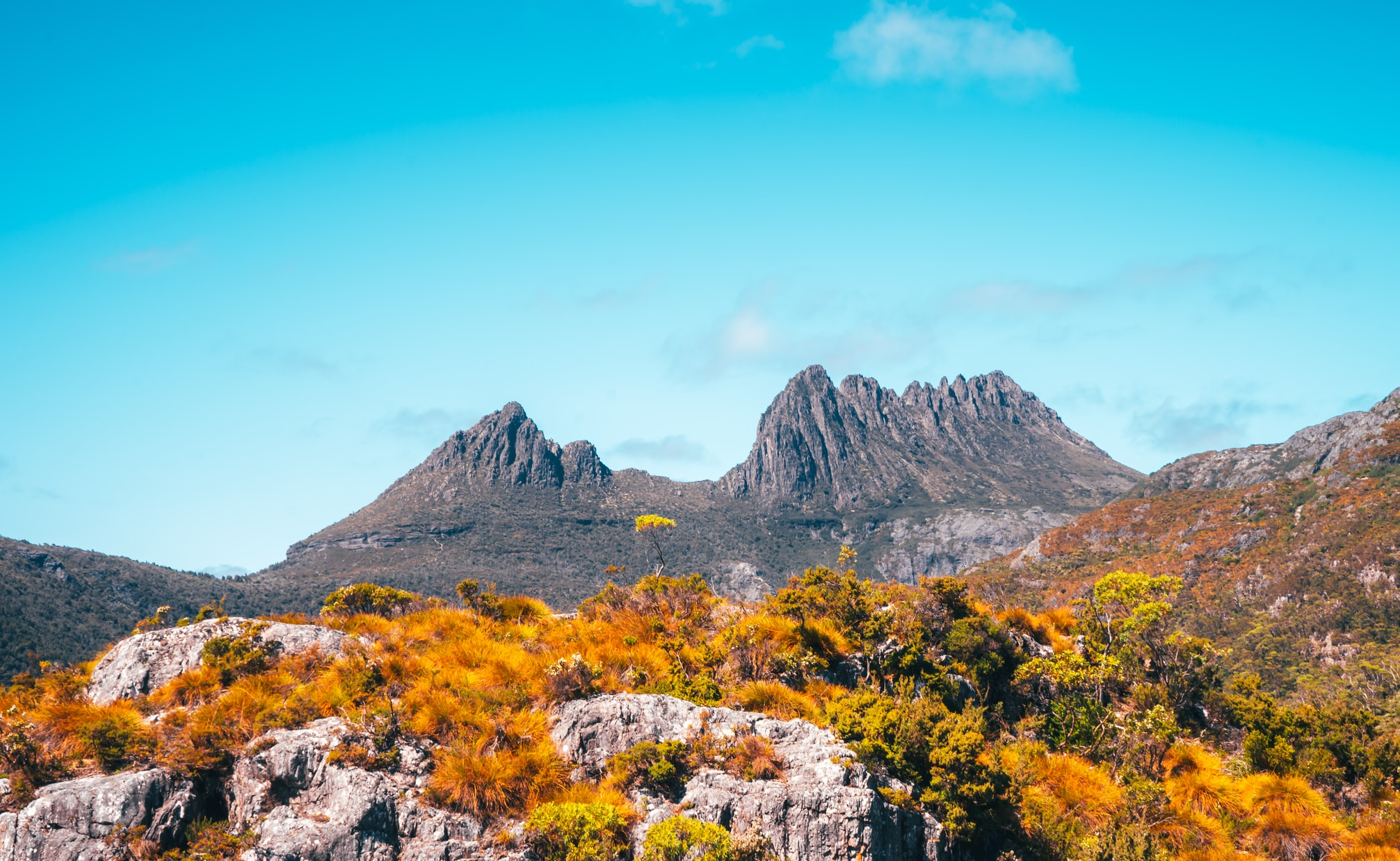 Tasmania-Cradle Mountain