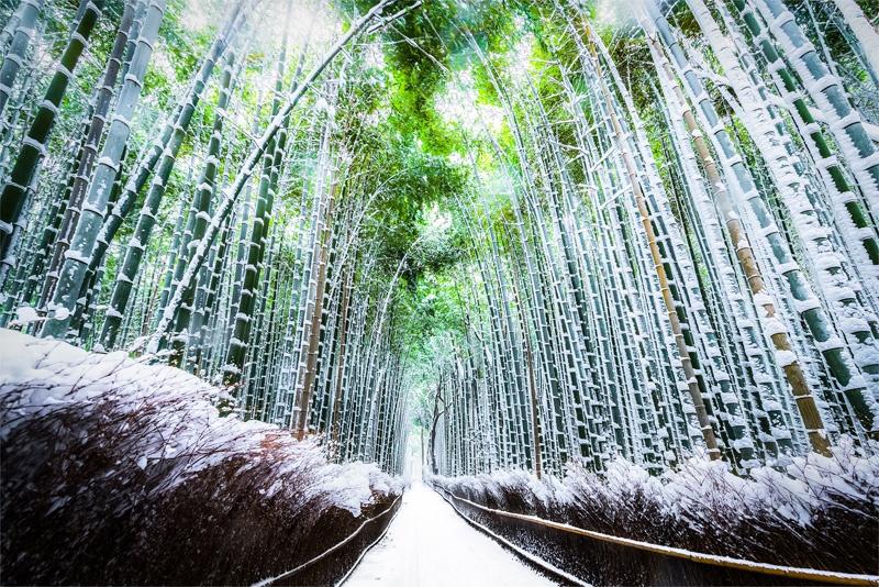 Kyoto-in-Winter.jpg