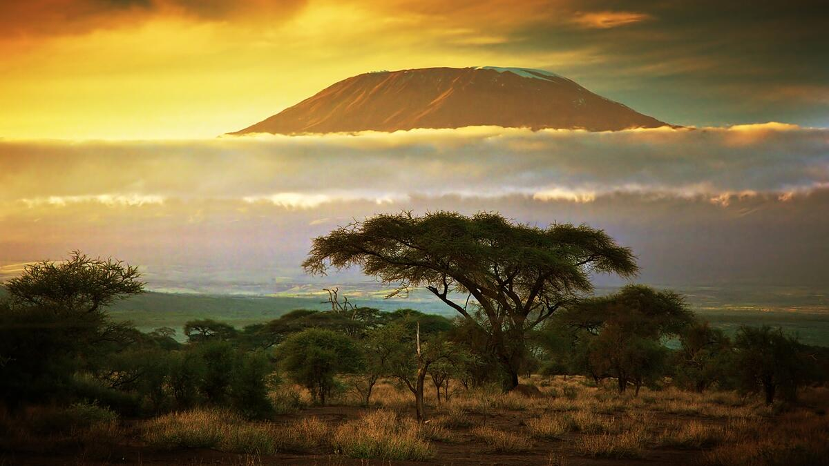 kilimanjaro-landscape-large-sunset.jpeg