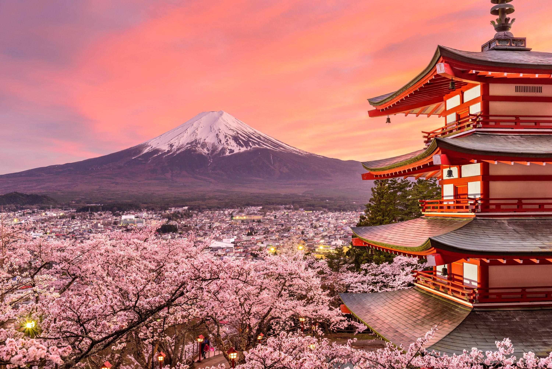 mount-fuji-sunset-cherry-blossom-spring-pagoda-16811 (1).jpg