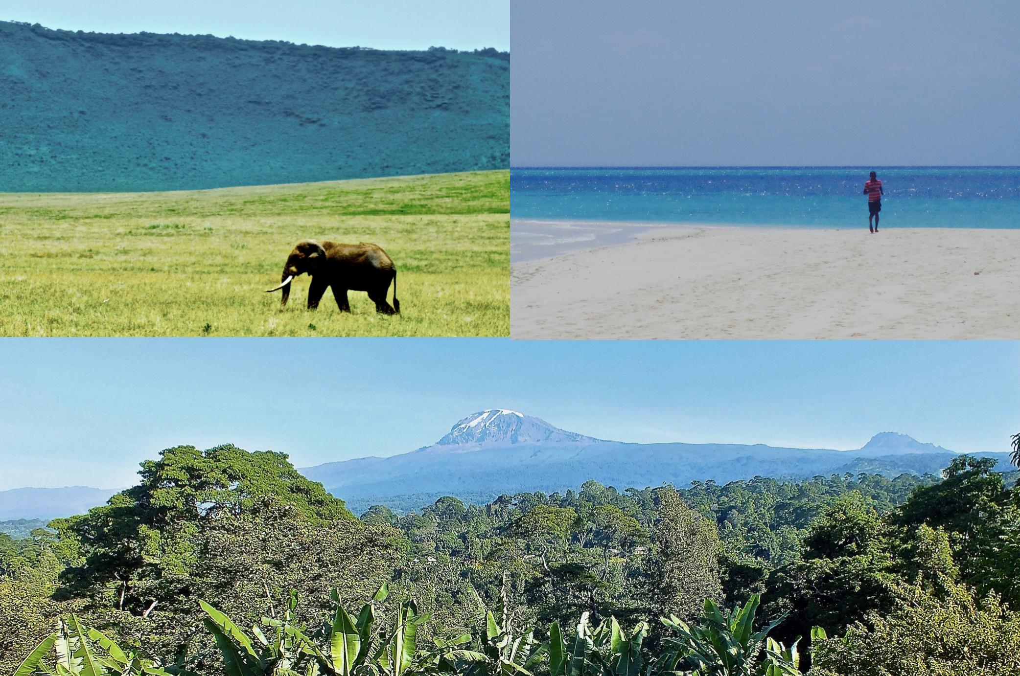 safaris-Zanzibar-Kili-Tanzania.jpg