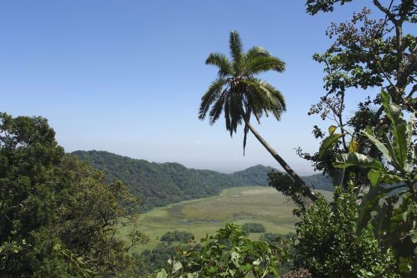 Tanzania Green Season 2