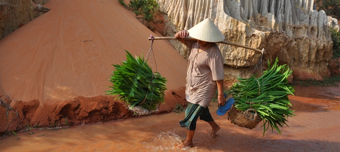 Farmer in Mui Ne